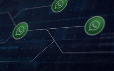 Whatsapp Marketing Software, Every Business Needs