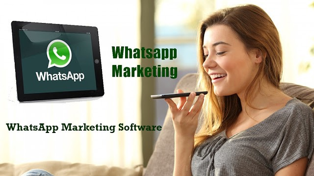 Why Should You Switch To Whatsapp Marketing Software?