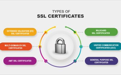 Types of SSL Certificates to Secure Your Website